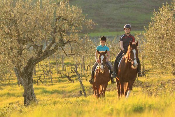 Équitation de base et promenades à cheval dans la campagne toscane